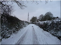 SS9412 : Tiverton : Bakers Hill & Television Mast by Lewis Clarke