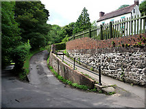 SJ6903 : Coalport Road, just below the All Nations Inn by Chris Gunns