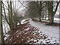 NY9265 : Frozen Path on Tyne Green by Les Hull