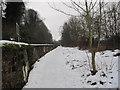 NY9265 : Path next to Railway Line by Les Hull
