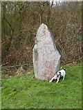 TM4392 : The Wherry Stone,  Aldeby Hall Staithe by John Courtney