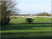 TR1236 : View of Folkestone racecourse by Nick Smith