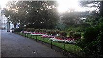 ST7565 : Evening at Sydney Gardens by David Roberts
