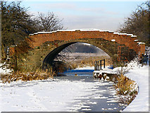 SD7908 : Bury & Bolton Canal, Rothwell Bridge by David Dixon