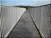 NS3336 : Footbridge, A78 by Richard Webb
