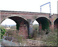 TG2205 : The Harford Rail Viaduct over the Ely line by Evelyn Simak