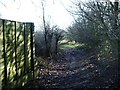 SP1393 : Footpath opens out towards golf course by Michael Westley