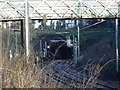 SP0590 : Footbridge and Tunnel entrance, Handsworth Wood by Michael Westley