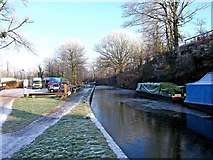 SO8688 : Staffordshire & Worcestershire Canal north of Greensforge Lock by P L Chadwick