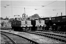 NZ3666 : Electric Locomotives at St Hilda Sidings by Ian Robinson