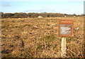 SW7819 : Main Dale nature reserve by Rod Allday