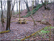 TG2707 : A woodland walk in Whitlingham Country Park - picnic table by Evelyn Simak