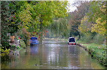 SK0418 : Trent and Mersey Canal at Rugeley, Staffordshire by Roger  Kidd
