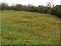 SY9287 : Bowling Green, Wareham by Derek Harper