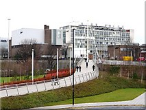 NZ2564 : New bridge over Central Motorway by Andrew Curtis