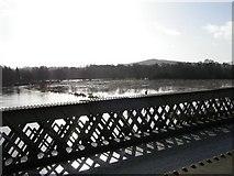 SU9946 : River Wey in flood from Broadford Bridge by Chas Bestos