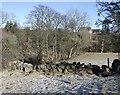 NS7378 : Stone boundary dyke by Robert Murray