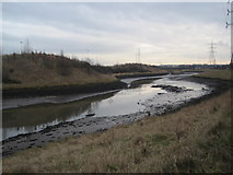 NZ3365 : River Don near Bede's World by Les Hull
