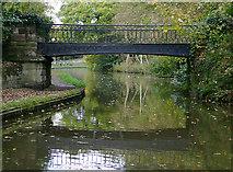 SJ9922 : Iron bridge (No 72A) at Great Haywood, Staffordshire by Roger  Kidd
