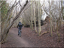 TQ2156 : Mountain biker in Downs View Wood by Stephen Craven
