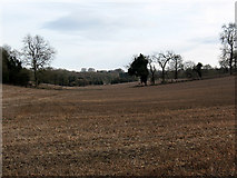 TQ2156 : Dry valley, Walton Downs by Stephen Craven