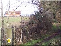 TQ5243 : Penshurst Estate Trail towards Redcot by David Anstiss