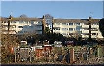 SX9066 : Allotments and flats, Barton Hill by Derek Harper