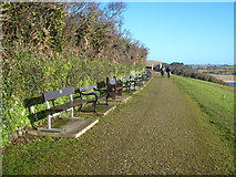 SW9276 : Seats with a view on St Saviour's Point by Rod Allday