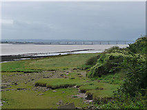 ST5590 : Looking down river from Beachley by Chris Gunns