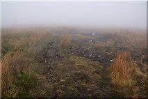 SD7942 : The path across Downham Moor by Bill Boaden