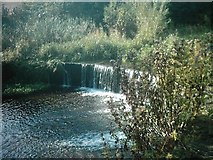 SK3436 : Weir at Brook Walk (Markeaton Brook), Derby by Eamon Curry