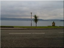 NS2982 : Palm trees in Helensburgh?! by Stephen Sweeney