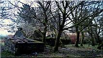 G7284 : Ruins at Meenateia by louise price