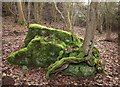 SO5312 : Mossy rock, Redding's Inclosure by Derek Harper