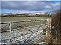 NU1200 : Winter scene by David Clark
