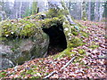 NH5966 : Tree-root cave, Black Rock Gorge by sylvia duckworth