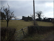ST3196 : Field beside Croeswen Farm by John Lord