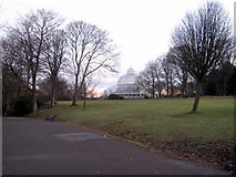 SJ3787 : Sefton Park - the Palm House in the morning by John S Turner