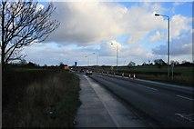 SK6739 : A52 near Saxondale by David Lally