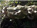 SM9619 : Oysters by the roadside by ceridwen