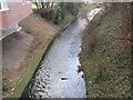 O1233 : Camac River, Dublin by IrishFlyFisher