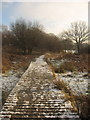 ST3090 : Snow on the Walkway by David Roberts
