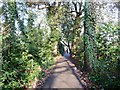 SU3814 : Tree-lined path along Romsey Road by Christine Johnstone
