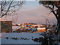 NZ0626 : Woodland in snow by Rebecca Beeston