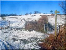 SO2655 : Snowy farmland at Upper Hergest by Trevor Rickard