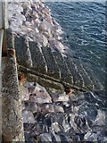 SX9062 : Sea wall, Livermead by Derek Harper