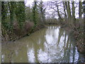 TM1457 : Moat  near All Saints Church by Adrian Cable