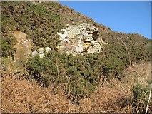NO5101 : Sandstone crag, Newark by Richard Webb