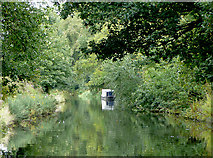 SP0483 : Worcester and Birmingham Canal near Birmingham University by Roger  Kidd