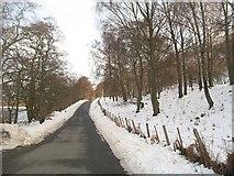 NN6557 : South Loch Rannoch road by Richard Webb